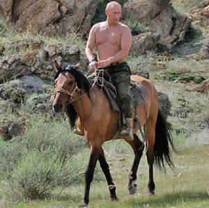 putin_horse-w300h298